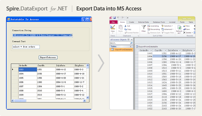 Export Data into MS Access