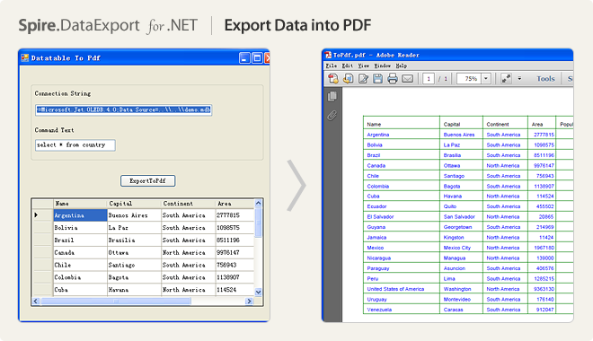 Export Data into PDF