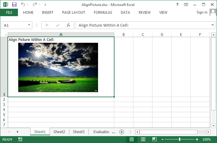 How to Align a Picture within a Cell in C#, VB.NET