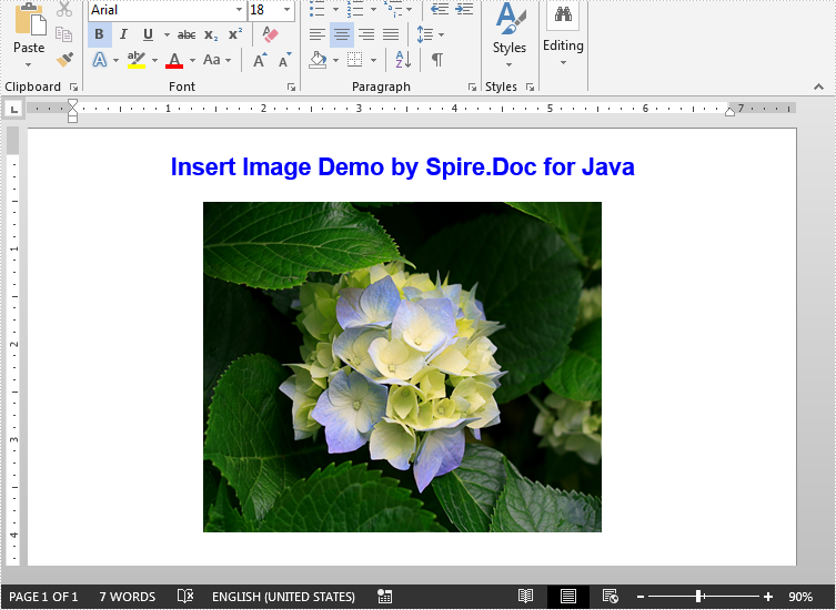 Insert Image into Word Document in Java