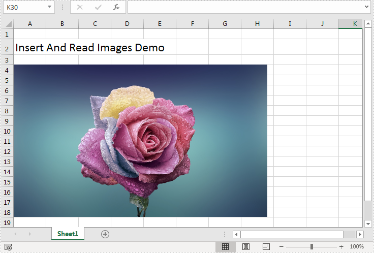 Insert and Extract Image in Excel in Java