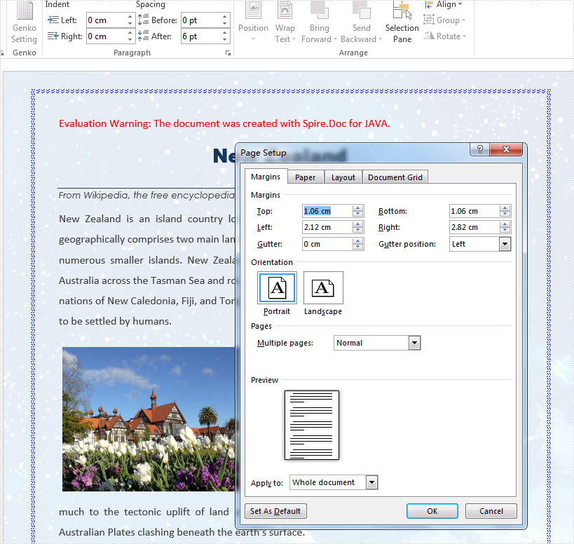 Java set page margins and page borders for word document