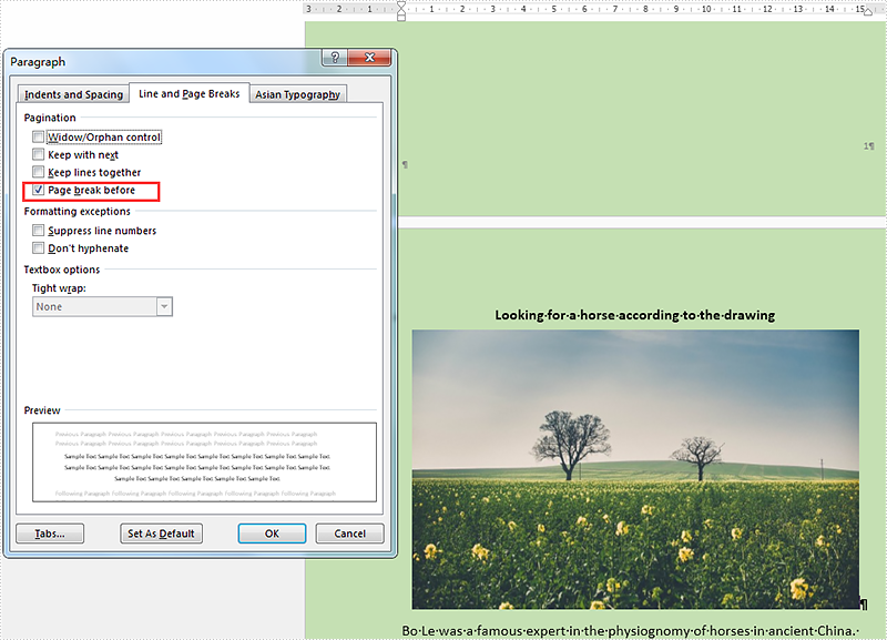 How to manage pagination on word document in C#