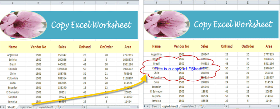 Copy Excel Worksheet